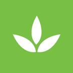 ico-green-1